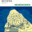 Tang YY, Holzel BK & Posner MI. The neuroscience of mindfulness meditation. Nature Reviews Neuroscience, 2015, 16, 213-225